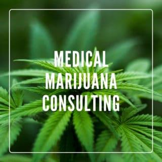 medical marijuana consulting